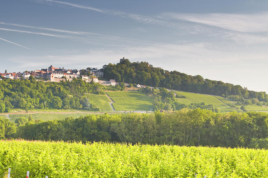 The Vineyards Of Sancerre In The Loire Photograph by Julian Elliott Photography