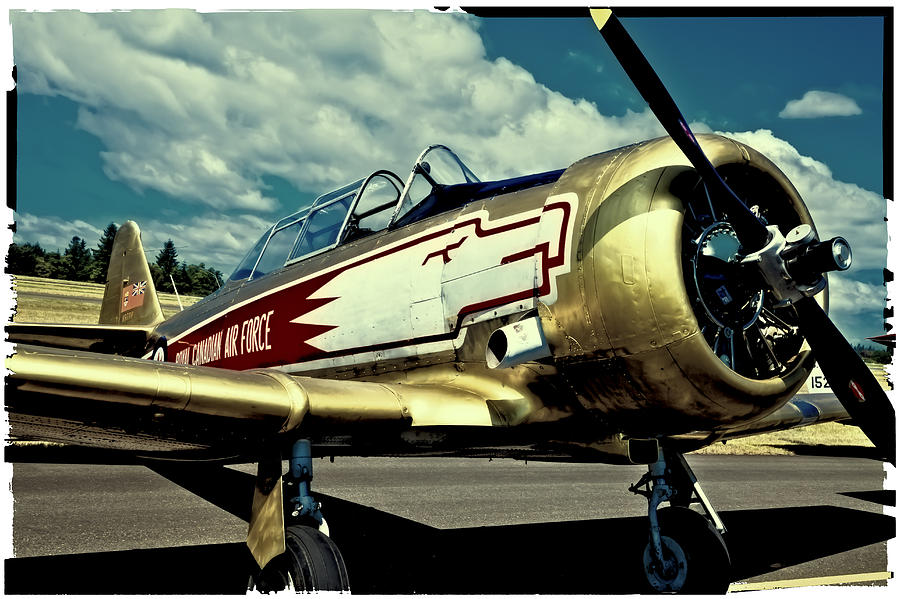 The North American T-6 Texan Photograph - The Vintage North American T-6 Texan by David Patterson