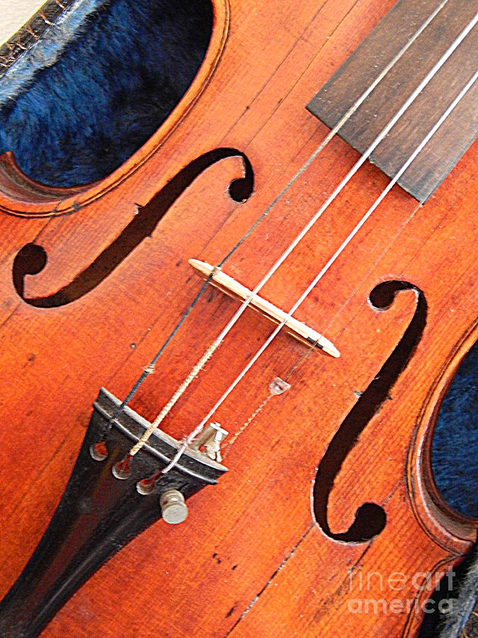 The Violin And The Memory Of Music In New Orleans Louisiana Photograph