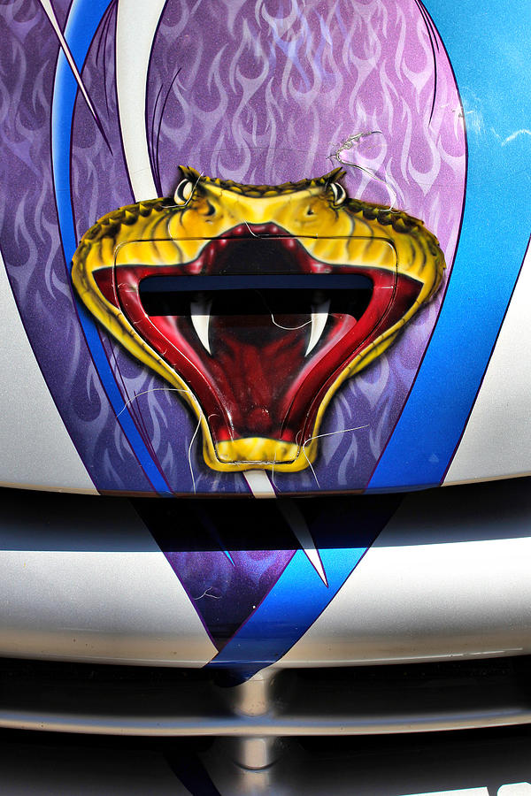 Dodge Viper Photograph - The Viper by Brian Davis