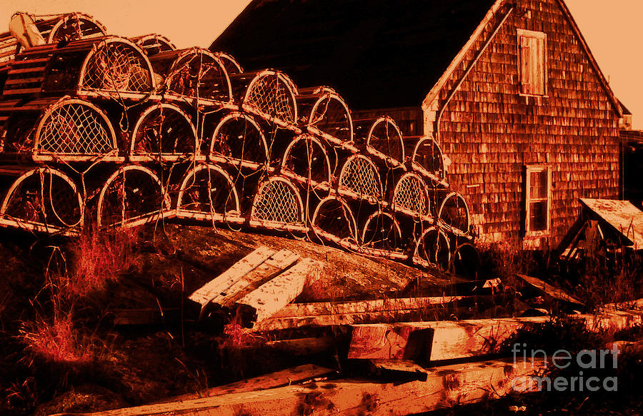 Lobster Traps Photograph - The Waiting Traps by Lydia Holly