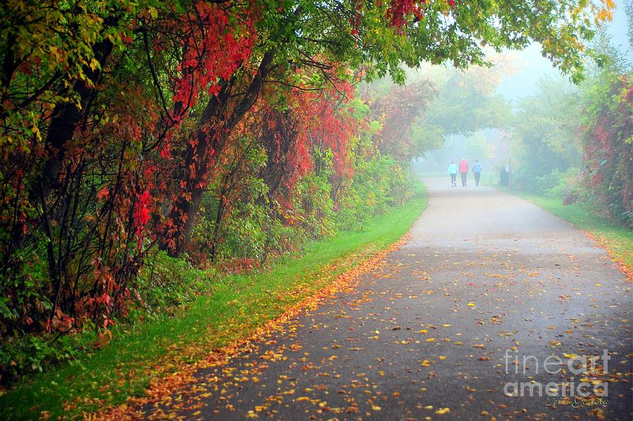 Path Photograph - The Walk by Terri Gostola