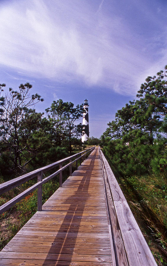 Cape Lookout Photograph - The Walk To Cape Lookout by Skip Willits