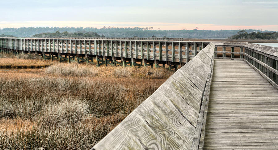 Boardwalk Photograph - The Walkway by JC Findley