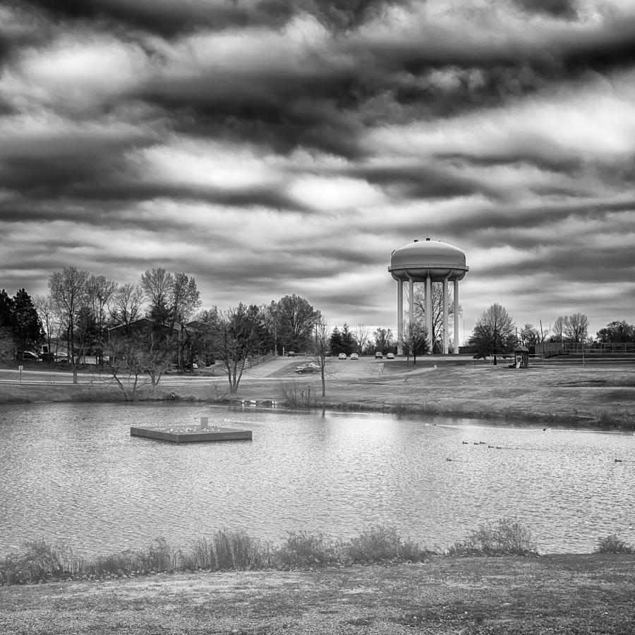 Nature Photograph - The Water Tower by Howard Salmon