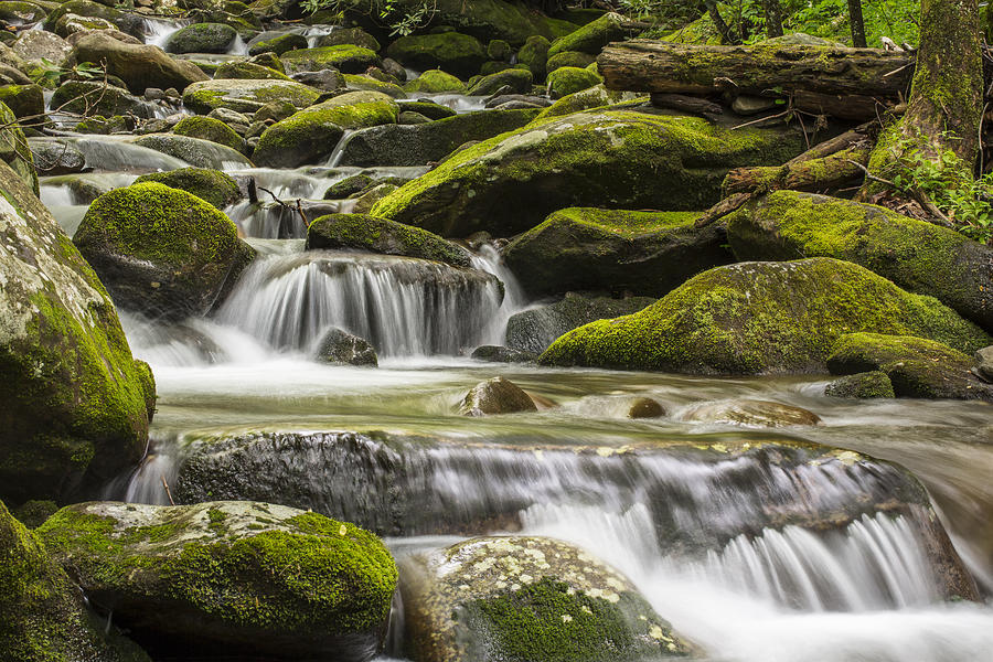 Horizontal Photograph - The Water Will by Jon Glaser