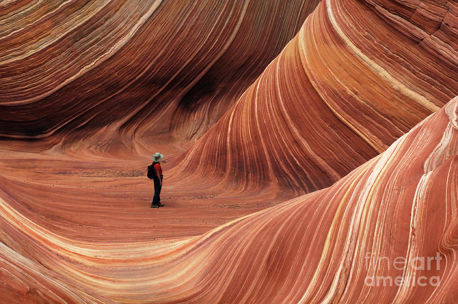 The Wave Photograph - The Wave Seeking Enlightenment by Bob Christopher