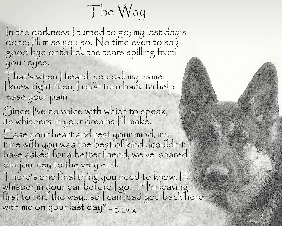 Quote Photograph - The Way by Sue Long