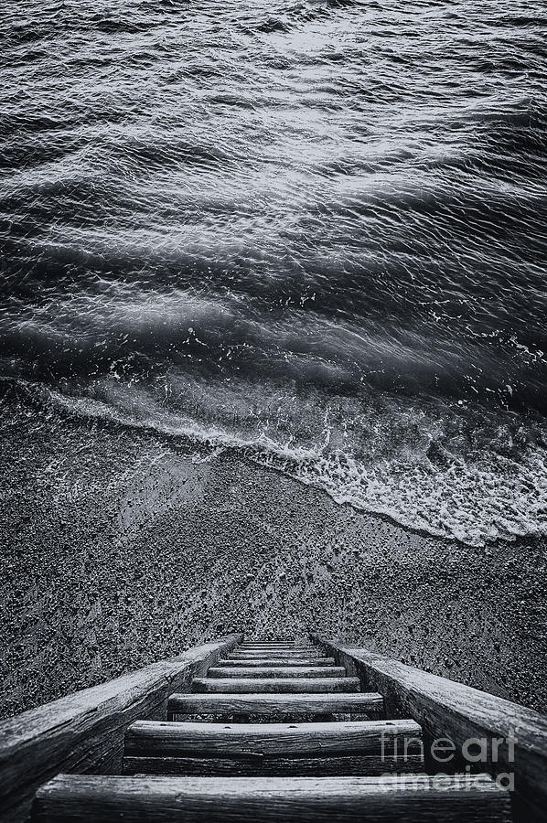 Bay Photograph - The Way To Unknown by Svetlana Sewell