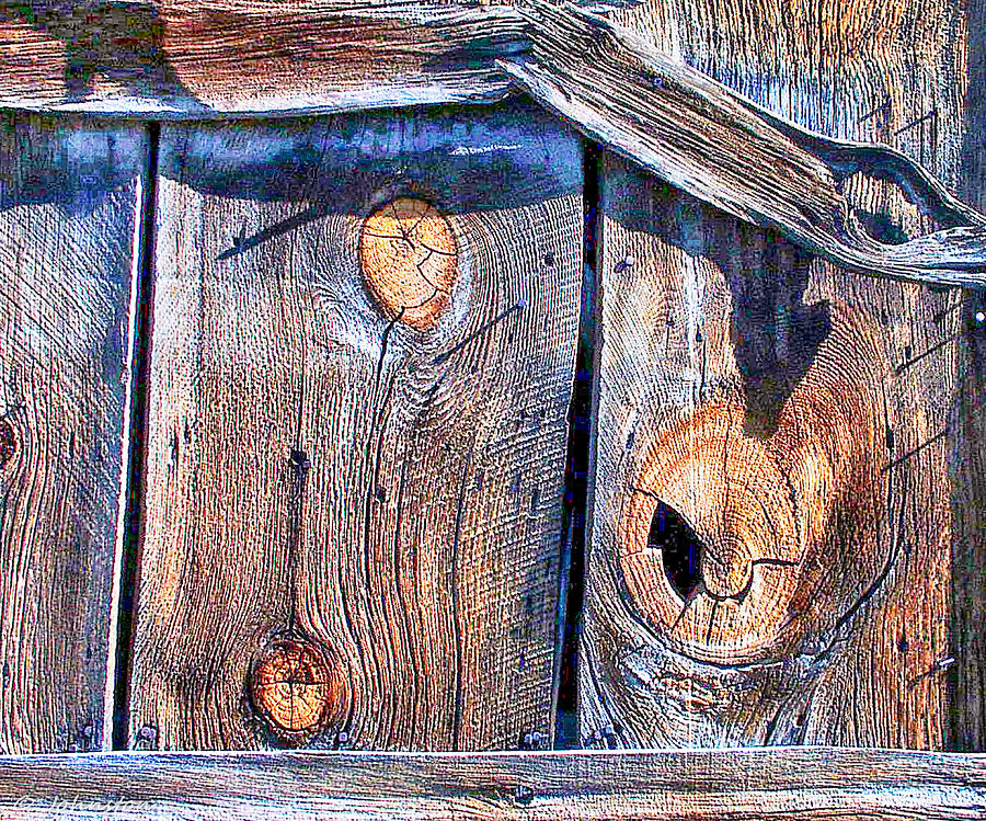 Weathered Digital Art - The Weathered Abstract From A Barn Door by Bob and Nadine Johnston