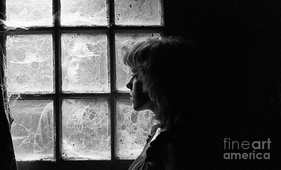 Cobwebs Photograph - The Web Of Past Love 1980 by Ed Weidman