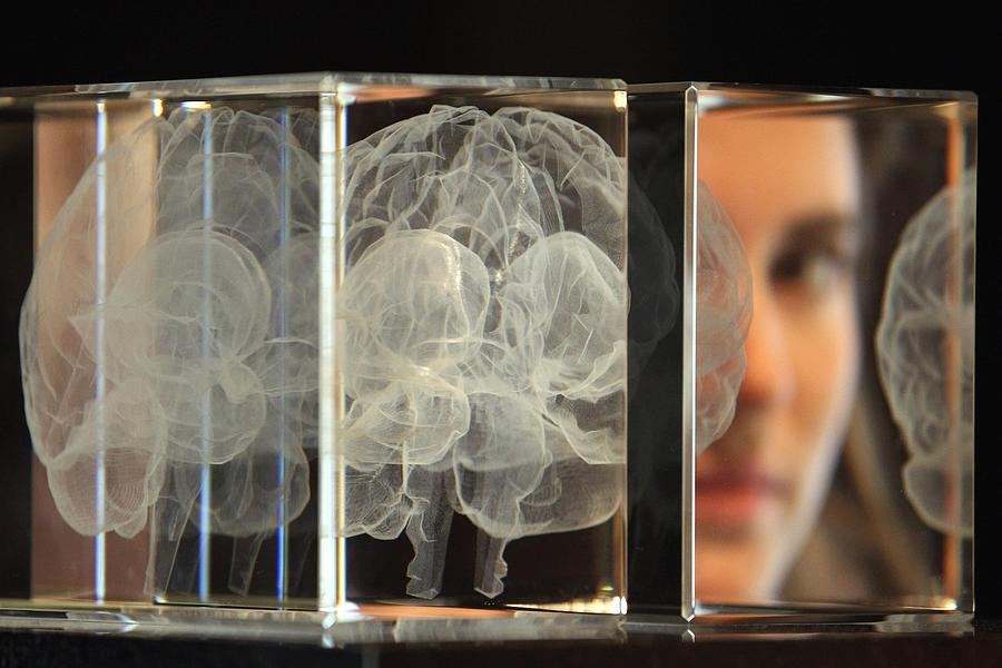 The Wellcome Collections Unveils Their New Exhibition Brains Photograph by Dan Kitwood