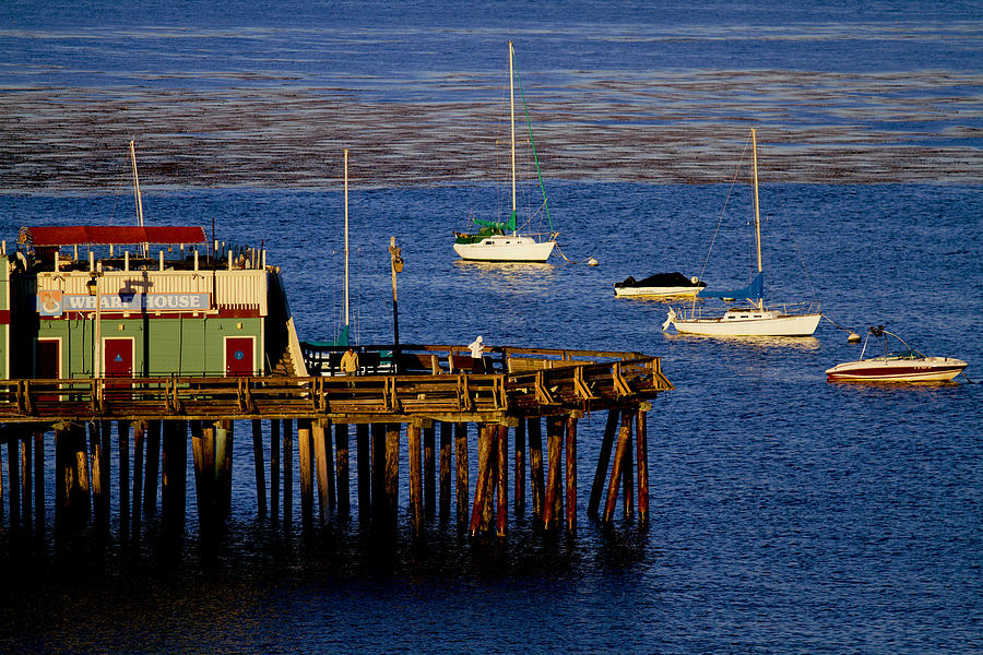 Wharf Photograph - The Wharf by Tom Kelly