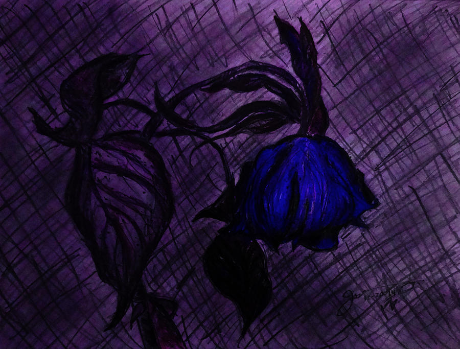 The Wilted Blue Rose Drawing