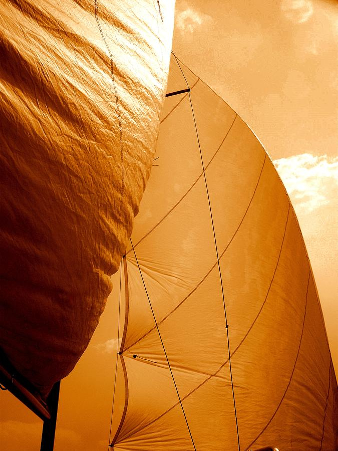 Sails Photograph - The Wind Will Carry Me by Rick Todaro