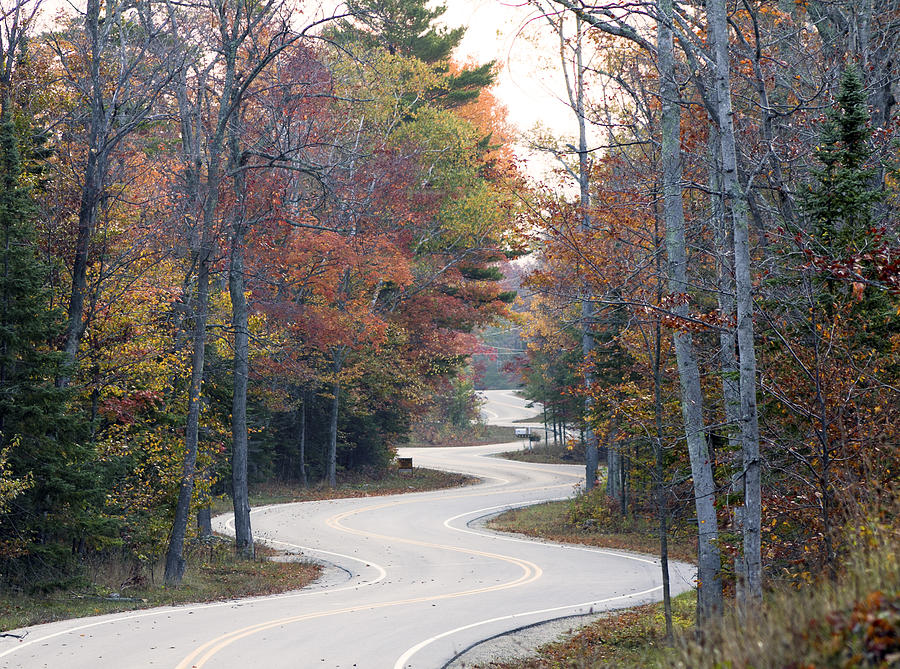 Autumn Photograph - The Winding Road by Jim Baker