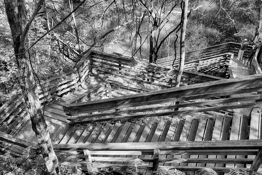 Nature Photograph - The Winding Stairs by Howard Salmon