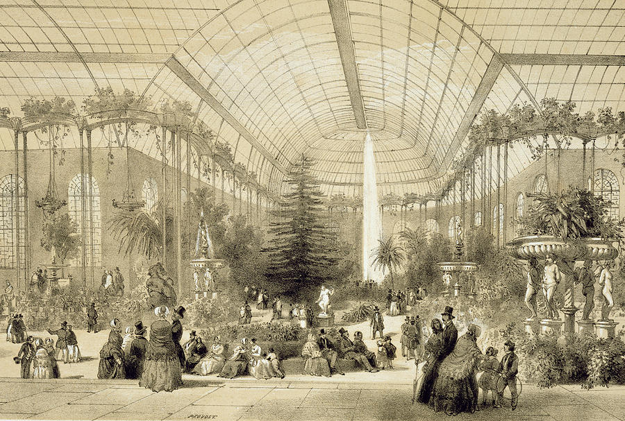 Jardin D'hiver Painting - The Winter Garden by A Provost