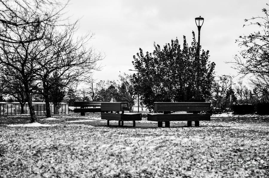 Snow Photograph - The Winter by Gautam Gupta