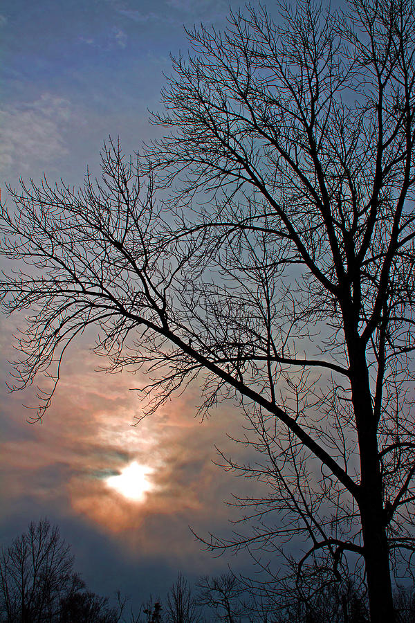 Winter Photograph - The Winter Skies by Rhonda Humphreys