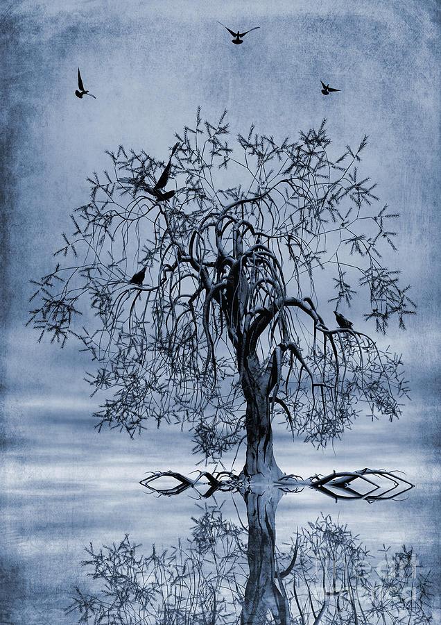 Wishing Tree Painting - The Wishing Tree Cyanotype by John Edwards