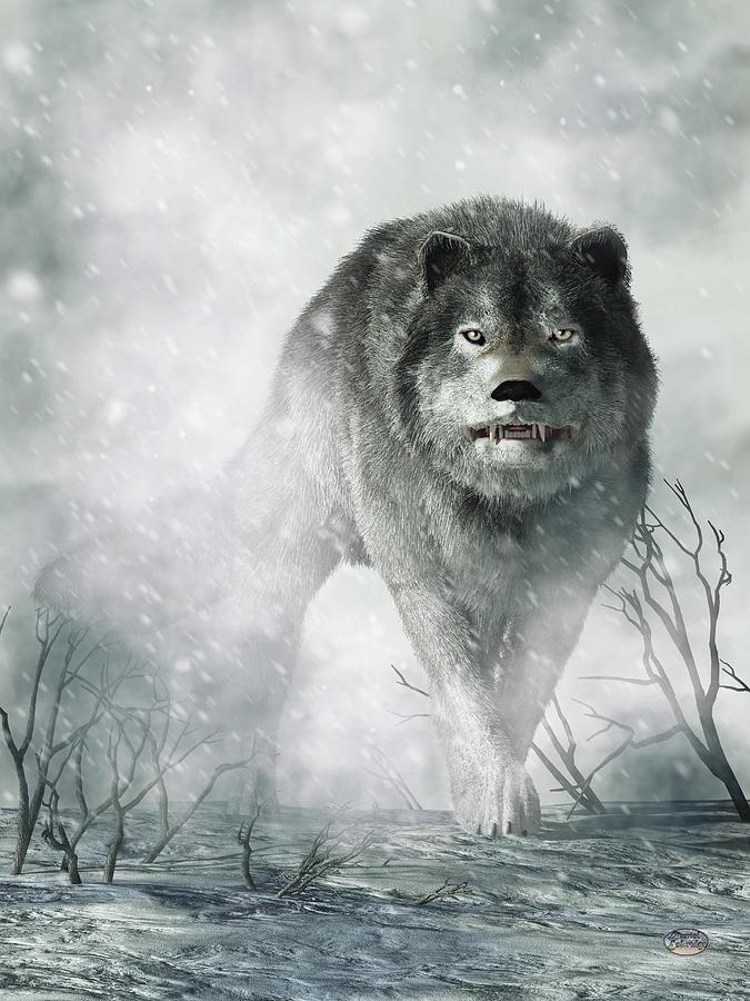 The Wolf Of Winter Digital Art