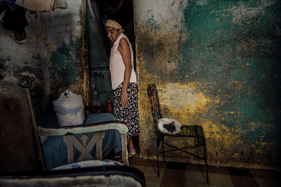 Havana Photograph - The Woman & The Cat by Yancho Sabev
