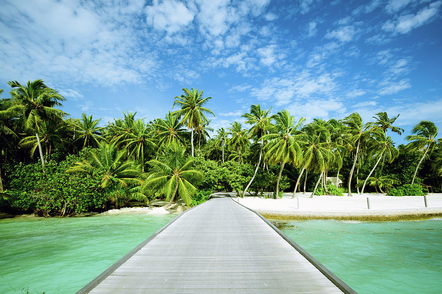 The Wooden Bridge Of Maldives Beach Photograph by Phototalk