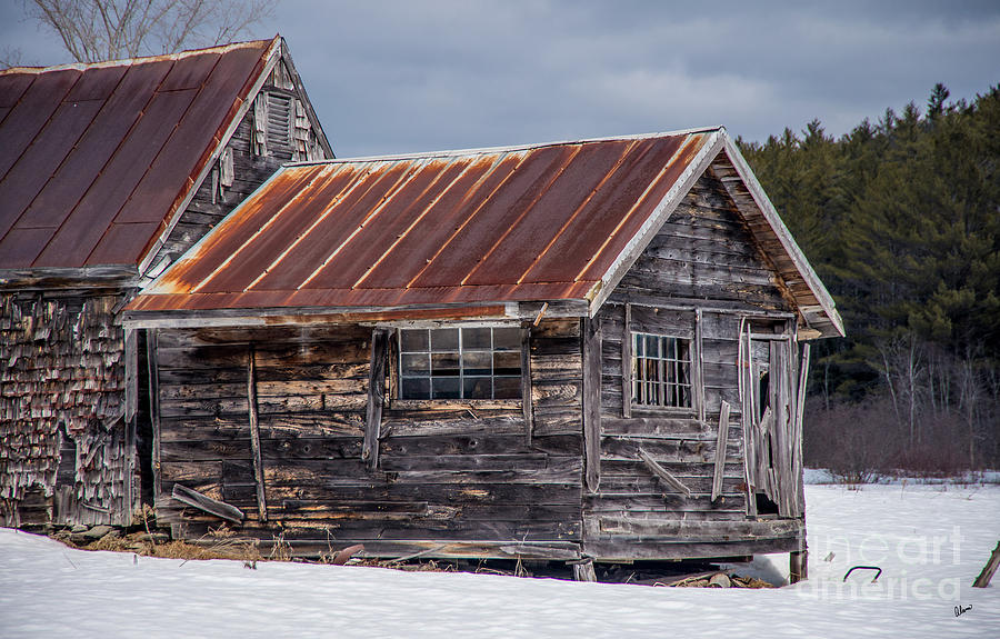Maine Nature Photographers Photograph - The Work Shed by Alana Ranney