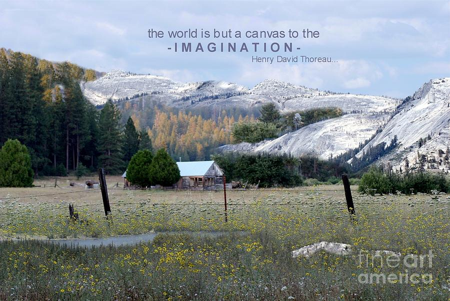 The World Is A Canvas Photograph