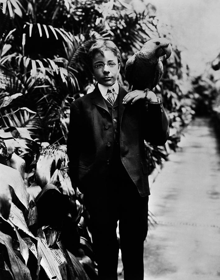 1902 Photograph - Theodore Roosevelt, Jr by Granger