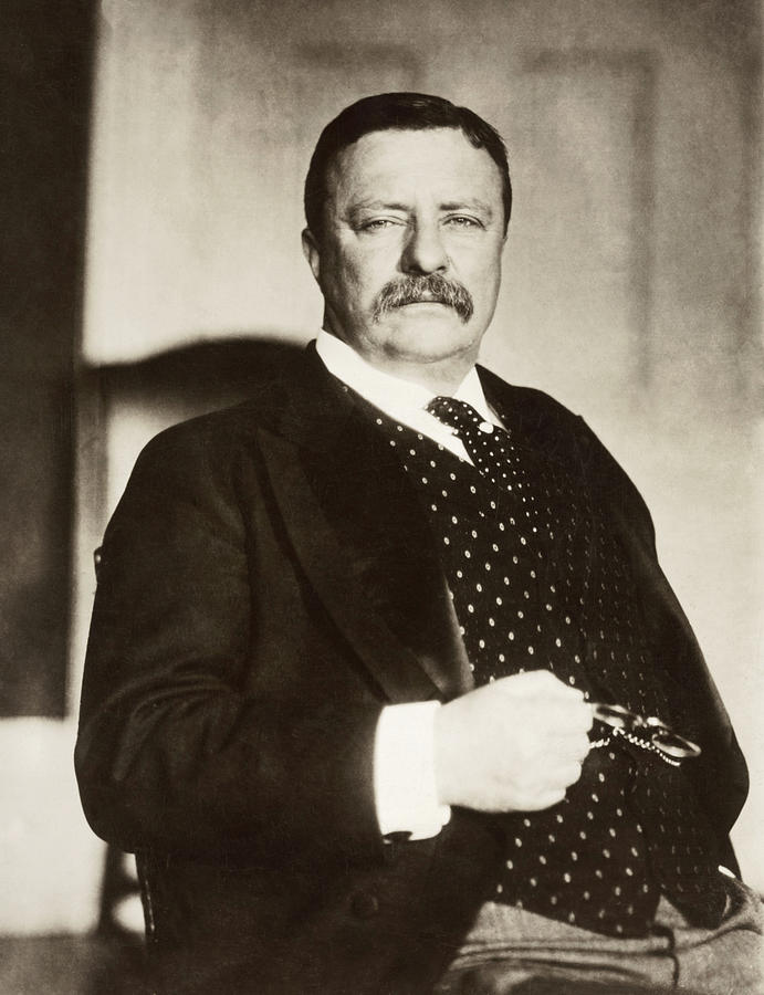 1908 Photograph - Theodore Roosevelt(1858-1919) by Granger