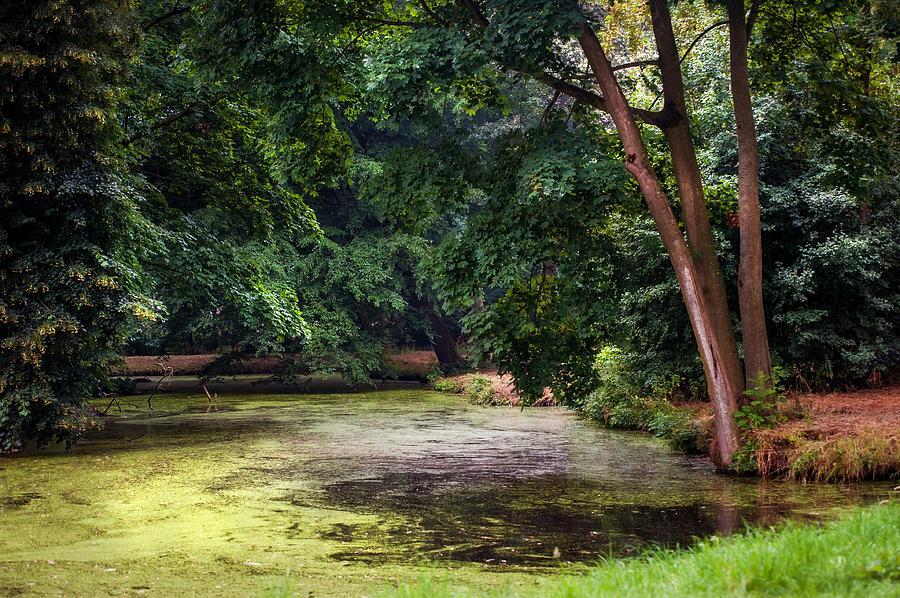 Utrecht Photograph - There Is Always A Hope. Park Of De Haar Castle by Jenny Rainbow