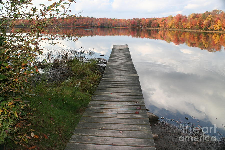 There Was a Crooked Dock by Deborah A Andreas