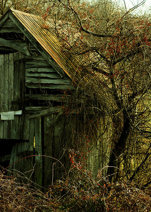 Barn Photograph - There Will Come Soft Rains by Rebecca Sherman
