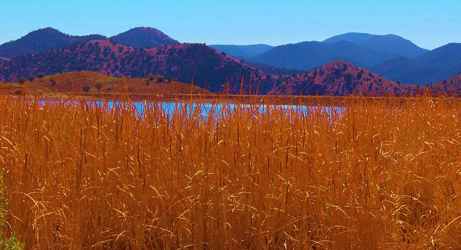 Bill Evans Lake Photograph - Theres A Lake Over There by Feva  Fotos