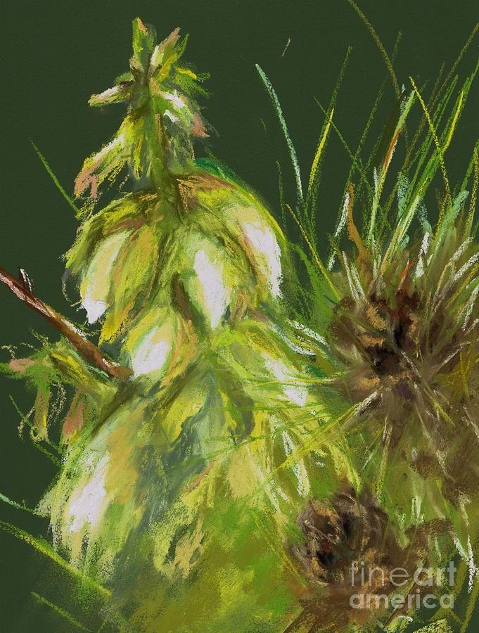 Desert Flowers Drawing - Theres A Yucca In My Yard by Frances Marino