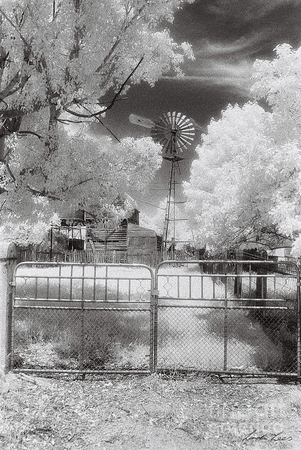 Infrared Photograph - Theres No Place Like Home by Linda Lees