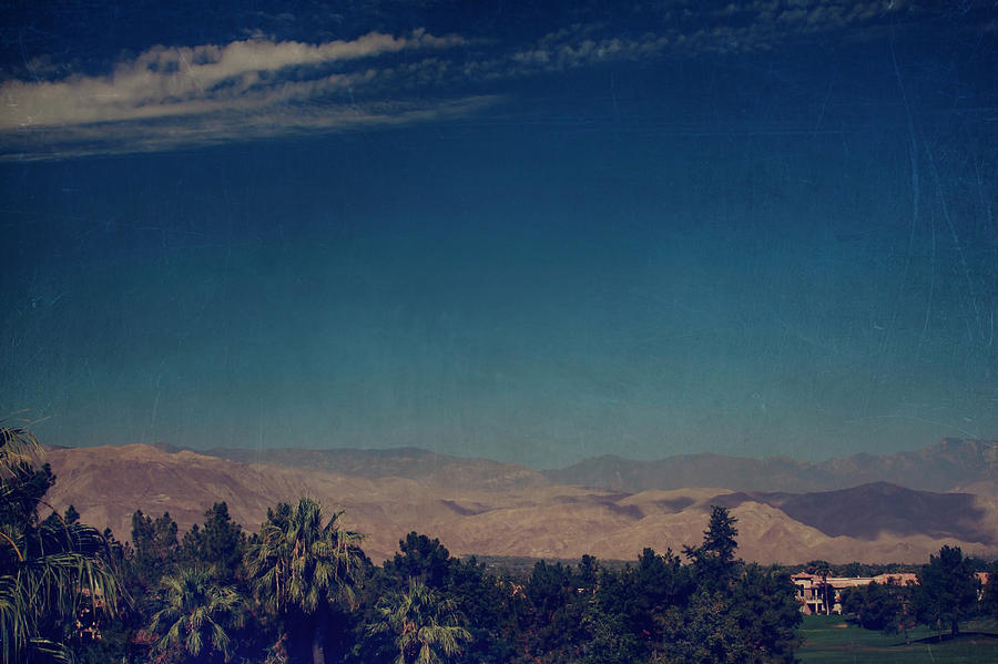 Palm Desert Photograph - They Cant Touch Us by Laurie Search
