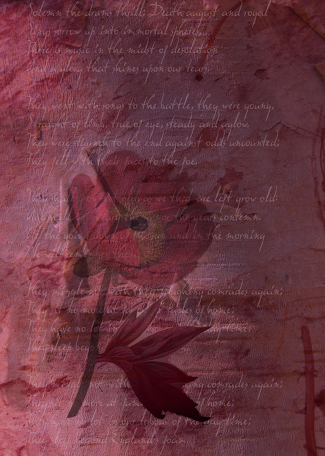 Remembrance Digital Art - They Shall Grow Not Old by Sarah Vernon
