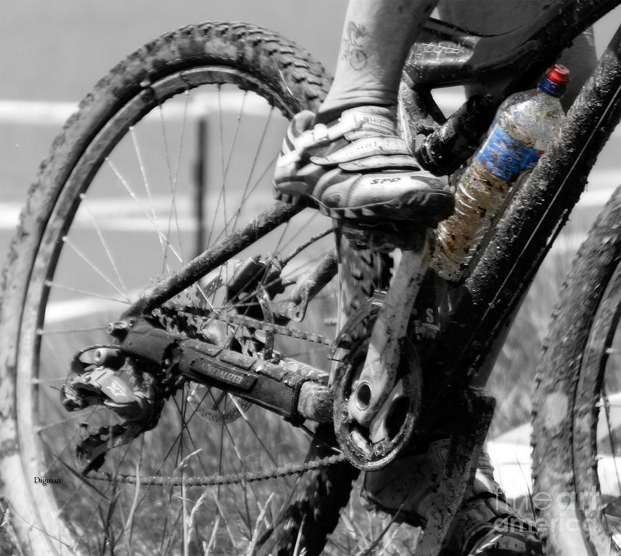 Cycling Photograph - Thirst  by Steven Digman