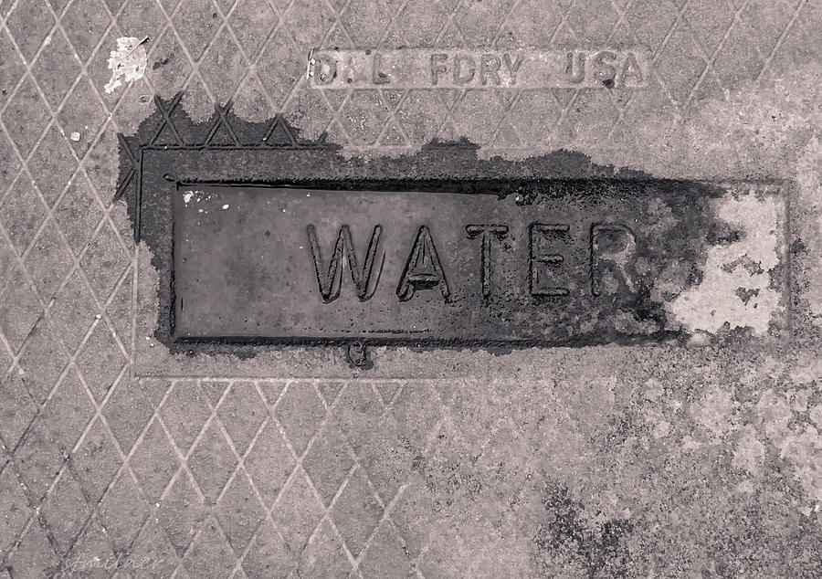 Water Photograph - Thirst  by Steven Milner