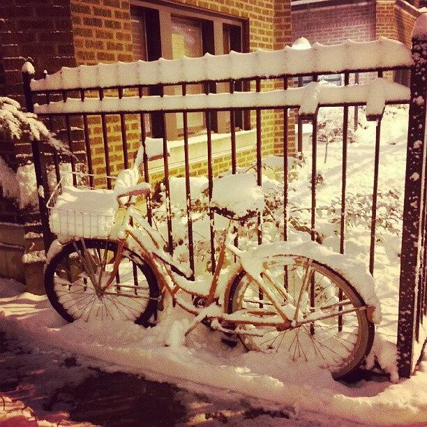 Bike Photograph - This Bike Hasnt Moved In 5 1/2 Years by Jill Tuinier