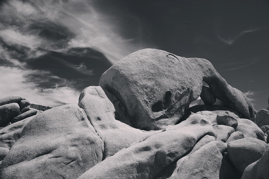 Joshua Tree National Park Photograph - This Hole In My Heart Is For You by Laurie Search