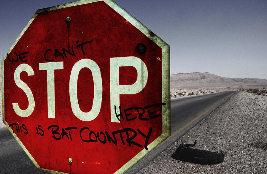 Movie Photograph - This Is Bat Country by Nicklas Gustafsson