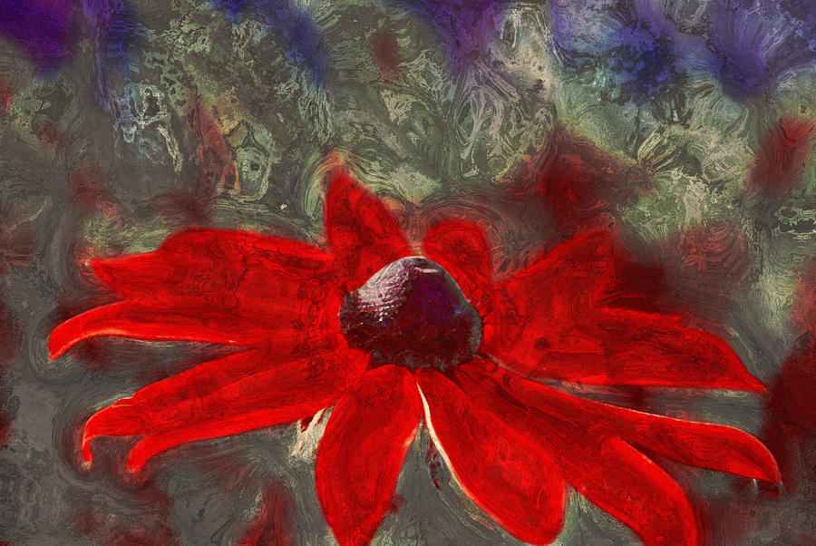 Red Photograph - This Is Not Just Another Flower - Spr01 by Variance Collections