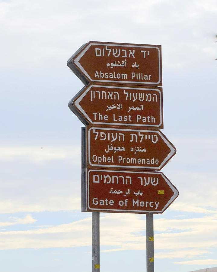 This is the Way in Three Languages by Rita Adams