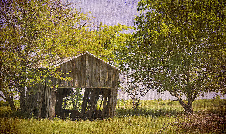 Abandoned Photograph - This Old Barn by Joan Carroll