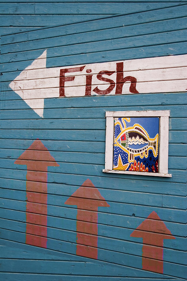 Fish Photograph - This Way To The Fish by Carol Leigh