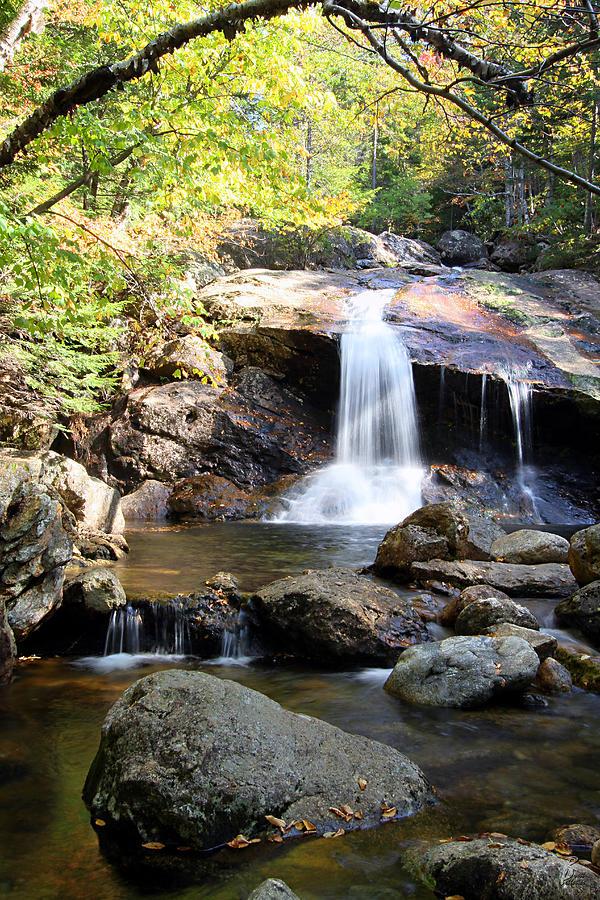 Water Photograph - Thompson Brook Falls by Brett Pelletier